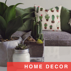 Found: the cacti pillows everyone's searching for